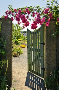 Open garden gate with roses